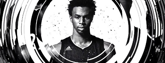 Andrew Wiggins Collection